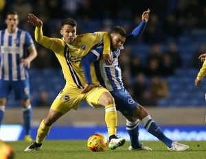 <b>Sky Bet Championship - Brighton & Hove Albion v Millwall - AMEX Stadium</b><br>Selection of 12 items
